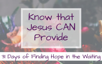 Know that Jesus CAN Provide {31 Days of Finding Hope in the Waiting}