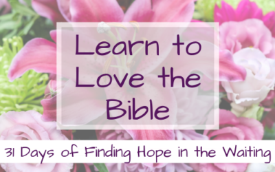 Learn to Love the Bible  {31 Days of Finding Hope in the Waiting}